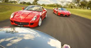 Ferrari's on Dean Wills farm